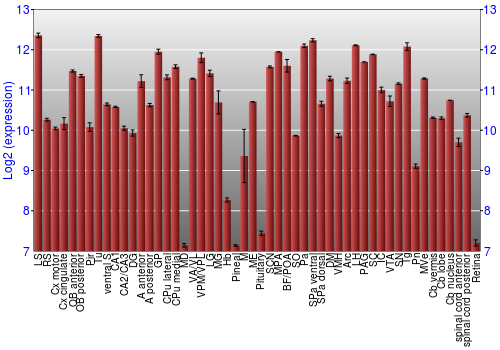Expression graph